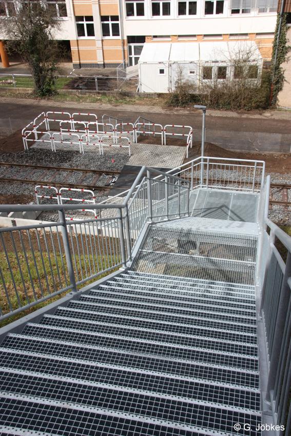 Im Schulgarten wachsen neuerdings Baucontainer.